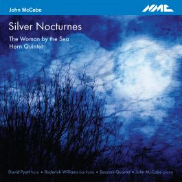 Silver Nocturnes