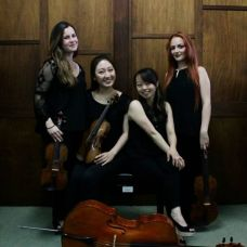 Salome Quartet